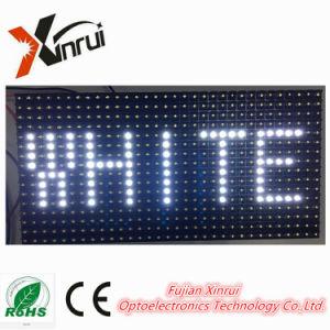 屋外の単一の白P10 LEDのモジュールの表示/Screen