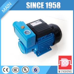 판매를 위한 무쇠 TPS60 시리즈 0.37kw 각자 흡입 펌프