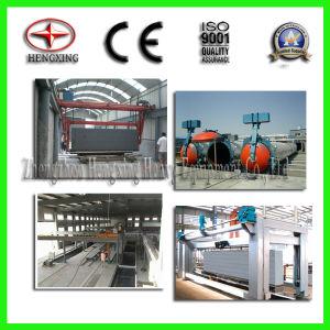 блок 20000-300000m3/Y AAC делая завод от Hengxing Компании