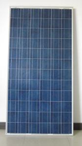 Panneau solaire-P (AP-240W/245W)