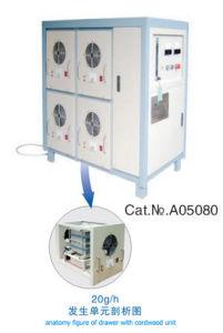 Gerador do ozônio (CFK-80)