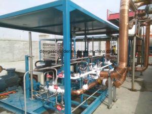 Schiene-Eingehangene Devices/L-CNG Einheit-Flüssigkeit-Pumpe