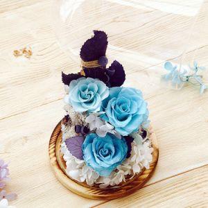 3-4 de jaar die Bewaarde Blauw duren nam Bloemen in de Koepel van het Glas toe