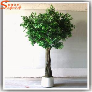 Fabricante profissional de alta imitações de árvore de Ficus Artificial