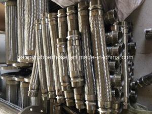 Aço inoxidável dos conjuntos de mangueiras metálicas flexíveis