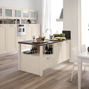 小さいスペース使用できるシェーカーのドアの食器棚の家具のための2018年の杭州の台所デザイン