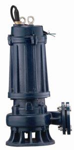 浸水許容ポンプ(承認されるセリウム)として汚れた水