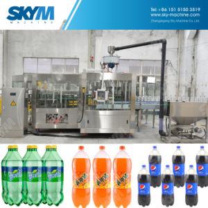 Pequeña capacidad 2000hpb máquina embotelladora de refrescos con gas