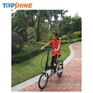 Smart E-bicicleta com design exclusivo e patente Avançada