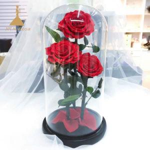 花の装飾またはバレンタインデーのギフトのためのガラス蓋の永遠のばらの花