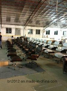 Presidenza popolare di Eames di svago di disegno della mobilia della mobilia domestica del salone (EC-015)
