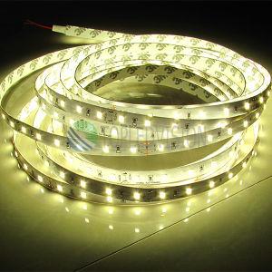 Nuova CC dell'indicatore luminoso di striscia di alta luminosità 2835 SMD LED 24V