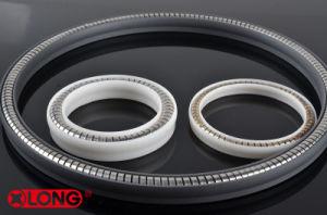 Guarnizione dell'orlo di PTFE/Teflon/Polymer con SS304/Ss306/SS316 per il sigillamento del compressore