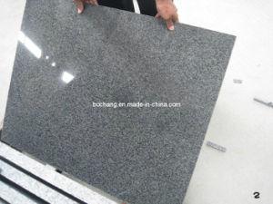 Темный серый гранит G654 для кубиков сляба плитки