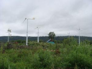 30%より多くの電気によって生成される高性能のああ5kw小さい風力
