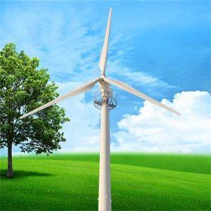 mulino a vento orizzontale del generatore di vento di prezzi della turbina di vento di asse 20kw con il diametro del rotore 10m per uso fabbrica/della casa