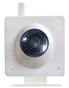 IP-Kamera -2