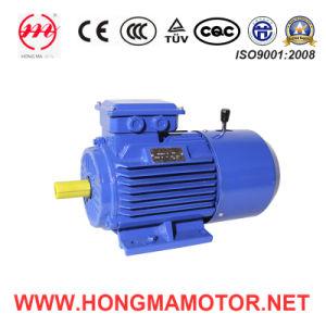 Moteur de C.C/moteur à induction électromagnétique triphasé de frein avec 4pole-0.18kw