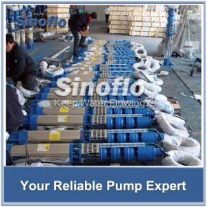 Pompe submersible à puits profond de l'irrigation de la circulation de la pompe à eau chaude