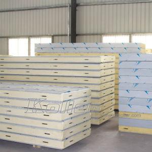 30 tonnes Capacité de stockage de viande pour chambre froide