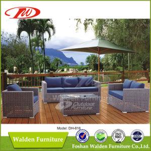 大きい藤によって編まれる屋外のソファー