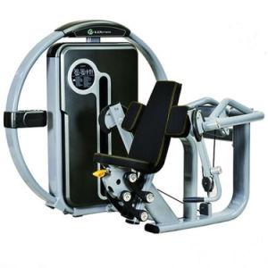 Macchina dell'arricciatura del bicipite della strumentazione di ginnastica di forma fisica della costruzione di corpo di macchina di concentrazione