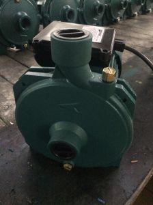 De centrifugaal Pomp van het Water, de Elektrische Pomp van het Water Scm, Pompen