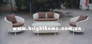 新しいデザイン柳細工の藤の屋外の家具Bp835
