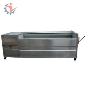 ショウガのクリーニング機械ポテト皮および洗濯機の魚の洗濯機