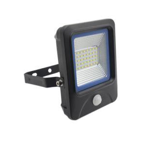 Indicatore luminoso di inondazione del sensore 30W LED del sensore PIR della cellula fotoelettrica