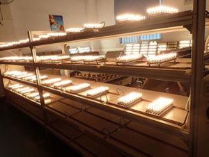 Lâmpada LED SMD 3W corpo de cerâmica 396lm levou luz G9