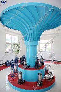 Wq Serien-versenkbare Abwasser-Pumpe