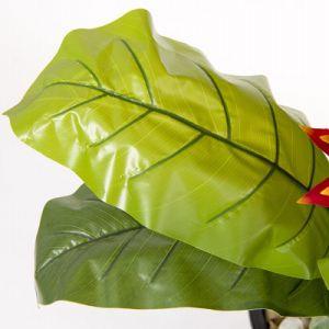 Управление оформление нового стиля дешевые цены искусственным покрытием завод поддельные Dragon фрукты красного цветка