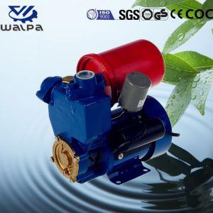 De Elektrische Pomp van uitstekende kwaliteit van het Water van de Vijver met EindBeschermer