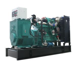 Générateur de biomasse chinois pour la biomasse Power Plant