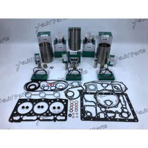 De Uitrusting van de diesel Revisie van Kubota D1005