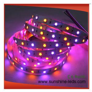 Resistente al agua/Flexible/RGB/Epistar/Brillo 3528 TIRA DE LEDS