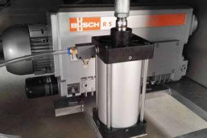 Acero inoxidable de doble cámara personalizado completamente automática de envasado al vacío/Máquina de embalaje