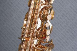 Saxophone ténor (Canex SAT-L) / Saxophone / Saxophone Laque d'or