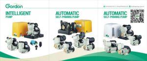 DK-Serien-Messingantreiber-Selbst, der zentrifugale Haushalts-Wasser-Pumpe grundiert