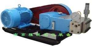 Combustível de Alta Pressão Hidráulica de água do Óleo Hidráulico da Bomba de êmbolo de extracção supercrítica partes separadas
