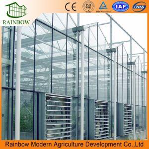 В значительной степени эффективной Венло Тип стекла для сельского хозяйства/Poultrys выбросов парниковых газов