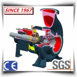 Extremo horizontal de Productos Químicos de succión de bomba centrífuga de agua
