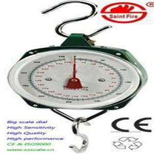 bilancia dinamometrica manuale della bilancia 250kg