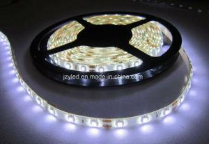 12V 60LEDs scaldano la striscia bianca 3528 di SMD LED