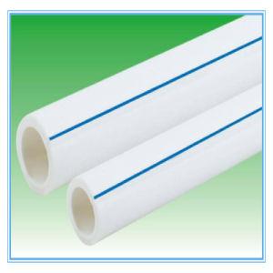 Ficha do Filtro de Água de avental, Bulkheadfitting, Adaptador de avental para filtro