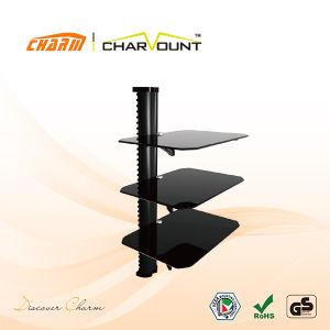 Suporte de parede para DVD com 600 mm de altura do tubo (CT-DVD-3DBS)
