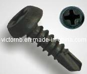 Casserole Framing Head Drywall Screw avec Tek Point