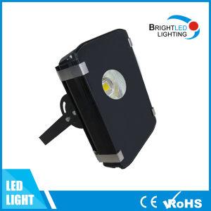 Indicatore luminoso di inondazione del tabellone per le affissioni 30W LED