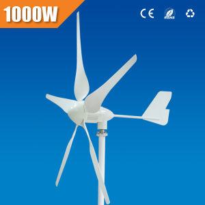 Ce keurde de Turbine van de Wind van 1000 W (goed pwt1000/12-l)